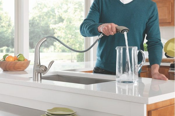 The Moen Arbor 7594 with pull-down sprayhead.